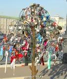 婚礼结构树 免版税图库摄影