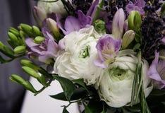 婚礼美丽的春天花束开花白色,紫罗兰色,绿色毛茛毛茛属, fresia 背景软的宏指令 免版税库存照片