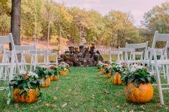 婚礼装饰用秋天南瓜和花 仪式室外在公园 客人的白色椅子 免版税图库摄影