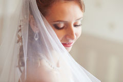 婚礼面纱 免版税库存照片