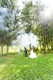 婚礼,爱,关系,婚姻 微笑的新娘和新郎与蓝色烟 库存图片