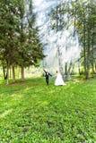 婚礼,爱,关系,婚姻 微笑的新娘和新郎与蓝色烟 库存照片