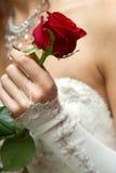 婚礼 免版税库存图片