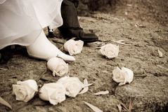 婚礼 库存图片