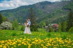 婚姻在山,在爱,山背景,站立的被围拢的蒲公英的一对夫妇,在有绿草的草坪中, 免版税图库摄影