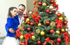 婚姻在12月 图库摄影