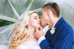 婚姻 新娘和新郎,亲吻在一个美丽的公园在婚礼之日 浪漫已婚夫妇 户外婚姻的夫妇是拥抱 图库摄影