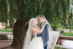 婚姻 新娘和新郎,亲吻在一个美丽的公园在婚礼之日 浪漫已婚夫妇 户外婚姻的夫妇是拥抱 免版税库存图片