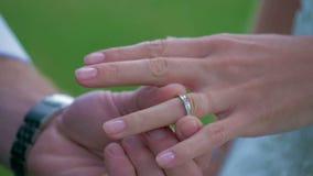 婚姻白色的背景明亮的环形 股票录像