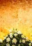 婚姻的玫瑰色背景 库存图片