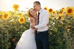 婚姻的白色礼服和新郎的站立新娘丝毫衬衣的和的领带拥抱在向日葵的领域 图库摄影