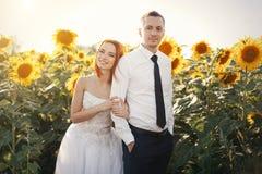 婚姻的白色礼服和新郎的站立新娘丝毫衬衣的和的领带拥抱在向日葵的领域 免版税库存图片