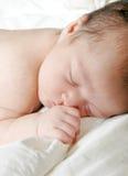 婴儿休眠 免版税库存图片