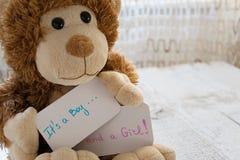 婴儿送礼会`它` s男孩 并且女孩` 玩具熊拿着孪生到来的一张公告卡片在家庭 免版税库存照片