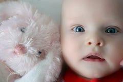 婴孩兔宝宝靛蓝粉红色 免版税图库摄影