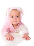 婴孩兔宝宝 免版税库存照片