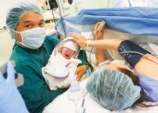 婴孩出生的bronovo新的海牙 库存照片