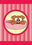婴孩动画片杯子狗宠物 图库摄影