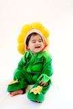 婴孩向日葵 免版税库存照片