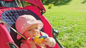 婴孩在一辆婴儿推车的` s骑马在公园 库存图片