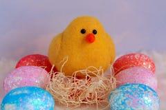 婴孩在六个鸡蛋中间的小鸡一黄色 库存照片