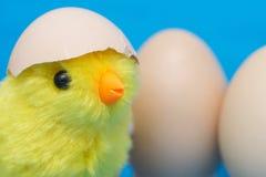 婴孩小鸡和破裂的鸡蛋在他的头 库存图片