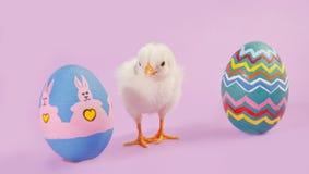 婴孩小鸡用二个五颜六色的复活节彩蛋 免版税图库摄影