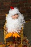婴孩小鸡 免版税库存照片