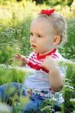 婴孩弓草甸红色 库存图片