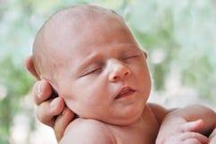 婴孩新出生的甜点 免版税库存图片