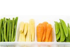 婴孩新鲜的混合蔬菜 免版税库存图片