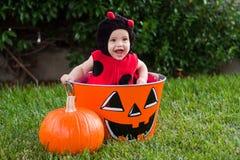 婴孩服装万圣节瓢虫笑 免版税库存照片