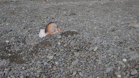 婴孩海滩 男孩充满石头在海边 在石头下的孩子 在男孩的胸口的海小卵石搅动 影视素材