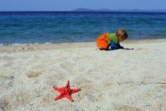 婴孩演奏红海星形的海滩女孩 免版税库存图片