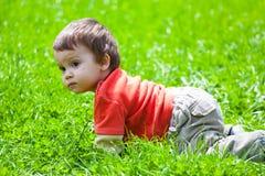 婴孩爬行的草 免版税库存照片
