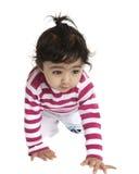婴孩爬行的逗人喜爱的女孩查出纵向w 免版税库存照片