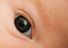 婴孩眼睛s 免版税库存图片