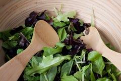 婴孩碗蔬菜沙拉 库存照片