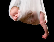 婴孩程序包鹳 库存照片