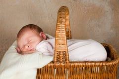 婴孩篮子野餐 免版税库存图片