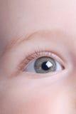 婴孩美丽的眼睛 库存图片