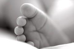 婴孩英尺 免版税库存图片