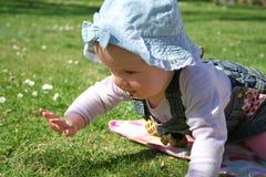 婴孩草坪 免版税图库摄影