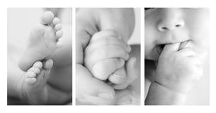 婴孩详细资料 库存图片