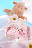婴孩配件箱礼品女孩鞋子 库存照片