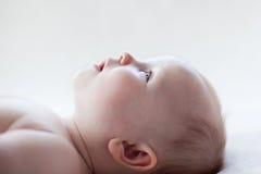 婴孩配置文件 图库摄影