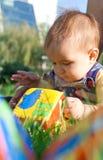 婴孩阻拦草位于的使用 库存照片