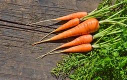 嫩胡萝卜和绿色上面 库存图片