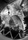 嫩黄瓜在伦敦 免版税库存照片