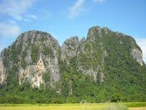 嫩绿的小山全景在东南亚 免版税库存照片